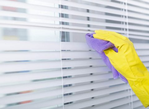 cleaning services in kolkata
